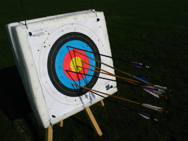 Target with arrows.JPG