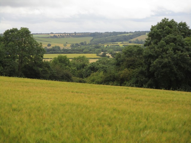 Looking back to Mollington